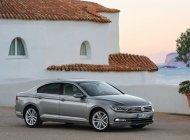 Cần bán xe Volkswagen Passat SEL đời 2015, màu xám, nhập khẩu nguyên chiếc giá 1 tỷ 599 tr tại Tp.HCM