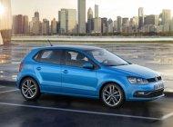 Cần bán Volkswagen Polo E 2016, màu xanh lam, nhập khẩu chính hãng giá 789 triệu tại Tp.HCM