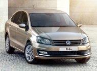 Cần bán Volkswagen Polo E đời 2016, màu nâu, nhập khẩu chính hãng giá 695 triệu tại Long An