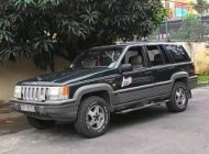 Cần bán Jeep Grand Cheroke 1994, màu đen, nhập khẩu, giá 225tr giá 225 triệu tại Tp.HCM