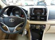 Nghệ An- Bán xe Toyota Vista G đời 2017, màu nâu vàng. 0919.005.676 giá 567 triệu tại Nghệ An