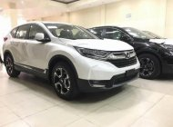 Bán Honda CR V SX 2018, màu trắng, nhập khẩu Thái Lan giá 958 triệu tại Tiền Giang