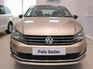 Bán xe Volkswagen Polo E năm 2018, xe nhập, giá chỉ 699 triệu giá 699 triệu tại Tp.HCM