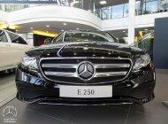 Bán Mercedes-Benz E250 AMG màu mới & giá đặc biệt giá 2 tỷ 479 tr tại Tp.HCM