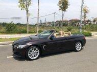 Cần bán gấp BMW 4 Series 428 đời 2016, màu đen, nhập khẩu nguyên chiếc giá 2 tỷ 250 tr tại Tp.HCM