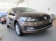 Bán xe Volkswagen Polo 1.6 AT năm sản xuất 2017, màu nâu, nhập khẩu, giá tốt giá 690 triệu tại Hà Nội