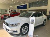 Ưu đãi giá sốc xe Volkswagen Passat Bluemotion mới nhập 100% giá 1 tỷ 450 tr tại Tp.HCM