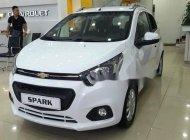 Bán Chevrolet Spark sản xuất năm 2018, màu trắng, giá tốt giá 299 triệu tại Tp.HCM