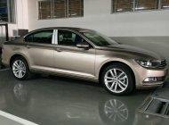 Cần bán Volkswagen Passat GP nhập nhập khẩu, mới 100% - chỉ cần 400 triệu đem xe về ngay giá 1 tỷ 266 tr tại Tp.HCM