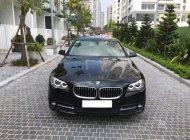 Bán BMW 5 Series 520i đời 2016, màu đen, nhập khẩu nguyên chiếc giá 1 tỷ 630 tr tại Hà Nội
