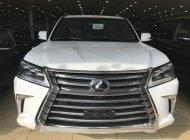 Bán Lexus LX570 2017 nhập khẩu, màu trắng, nội thất nâu, mới 100%, xe giao ngay giá 7 tỷ 890 tr tại Hà Nội