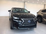 Giao ngay Lexus NX300H nhập khẩu Châu Âu, full option giá 3 tỷ 100 tr tại Hà Nội