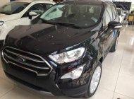 Bán Ford EcoSport đời 2018, màu đen giá Giá thỏa thuận tại Tp.HCM
