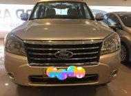 Bán Ford Everest AT sản xuất năm 2009, màu vàng   giá 470 triệu tại Tp.HCM
