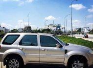 Bán ô tô Ford Escape sản xuất 2011, màu bạc, 380 triệu giá 380 triệu tại Tp.HCM
