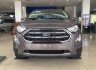Đại Lý xe Ford tại Lào Cai bán Ford EcoSport Trend sản xuất năm 2018, màu nâu hổ phách. LH: 0941921742 giá 590 triệu tại Lào Cai