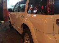 Cần bán Ford Everest năm sản xuất 2009, màu trắng còn mới, giá chỉ 345 triệu giá 345 triệu tại Tp.HCM