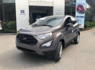 Cần bán xe Ford EcoSport đời 2018, màu nâu, nhập khẩu giá Giá thỏa thuận tại Hà Nội