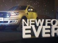 Hot Ford Everest model 2019, đủ màu chỉ với từ 200 triệu đồng, hỗ trợ trả góp lên tới 90% giá trị xe - LH 0967664648 giá 900 triệu tại Hà Nội