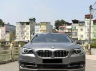 Xe BMW 5 Series 520i năm sản xuất 2013, màu xám  giá 1 tỷ 290 tr tại Hà Nội