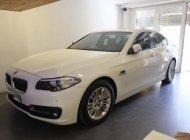 Cần bán BMW 5 Series 520i đời 2014, màu trắng, xe nhập giá 1 tỷ 450 tr tại Tp.HCM