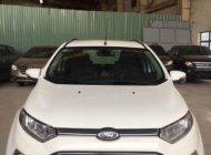 Bán ô tô Ford EcoSport Titanium AT sản xuất năm 2014, màu trắng   giá 499 triệu tại Bình Dương