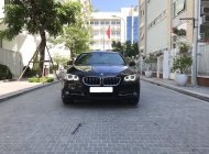 Bán BMW 5 Series 520i sản xuất 2015, màu đen, nhập khẩu giá 1 tỷ 580 tr tại Hà Nội