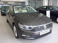 Bán Volkswagen Passat 1.8 Bluemotion 2017, màu xám, nhập khẩu giá 1 tỷ 420 tr tại Tp.HCM