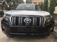 Bán Toyota Prado 2018, nhận đặc xe giao sớm nhất. giá 2 tỷ 340 tr tại Tp.HCM