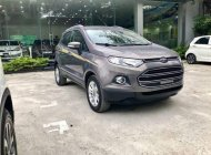 Chính chủ cần bán lại xe Ford EcoSport 2017, màu xám giá 575 triệu tại Hà Nội