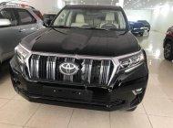 Bán Toyota Land Cruiser Prado VX đời 2018, màu đen, xe nhập giá 2 tỷ 340 tr tại Hà Nội