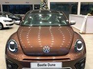 Bán xe Volkswagen Beetle sản xuất 2018, màu nâu nhập từ Âu giá 1 tỷ 469 tr tại Tp.HCM