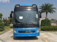 Bán Hyundai Universe Premium 410PS sản xuất 2019, màu xanh lam giá 3 tỷ 690 tr tại Đà Nẵng