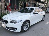 Bán BMW 5 Series 520i LCI đời 2014, màu trắng, xe nhập giá 1 tỷ 390 tr tại Tp.HCM