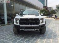 Bán xe Ford F 150 đời 2018, màu trắng, nhập khẩu giá 4 tỷ 200 tr tại Hà Nội