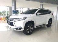 Bán Mitsubishi Pajero đời 2019, màu trắng, nhập khẩu giá 960 triệu tại Cần Thơ