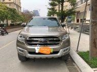 Cần bán Ford Everest Titanium đời 2017, màu vàng, xe nhập  giá 1 tỷ 60 tr tại Hà Nội