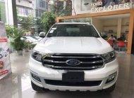 Bán xe Ford Everest 2.0AT đời 2019, màu trắng, xe nhập giá 949 triệu tại Điện Biên