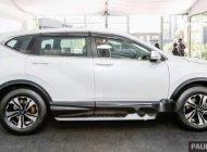 Bán xe Honda CR V sản xuất 2019, xe nhập, 983tr giá 983 triệu tại Tp.HCM