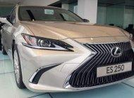 Bán Lexus ES 250 đời 2019, màu vàng cát, nhập khẩu giá 2 tỷ 499 tr tại Đà Nẵng