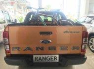 Cần bán Ford Ranger năm 2019, nhập khẩu, giá tốt giá 903 triệu tại Tp.HCM