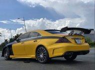 Cần bán lại xe Mercedes CLS350 đời 2005, màu vàng giá 500 triệu tại Tp.HCM