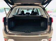 Bán Subaru Forester 2019, nhập khẩu nguyên chiếc giá 990 triệu tại Tp.HCM
