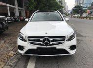 Bán ô tô Mercedes GLC300 năm sản xuất 2019, màu trắng giá 2 tỷ 250 tr tại Hà Nội