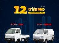 Bán xe Suzuki Blind Van năm sản xuất 2019, giá tốt giá 290 triệu tại Tp.HCM