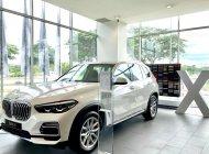 Bán xe BMW X5 đời 2019, trắng, nhập khẩu 100% từ Đức giá 4 tỷ 199 tr tại Tp.HCM