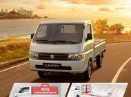 Suzuki Super Carry Pro đời 2019 giá 299 triệu tại Bình Dương