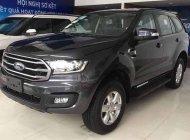 Cần bán xe Ford Everest đời 2019, nhập khẩu nguyên chiếc, giá 972tr giá 972 triệu tại Hà Nội
