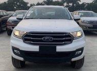 Cần bán xe Ford Everest Ambiente 4x2 MT đời 2019, nhập khẩu nguyên chiếc giá 920 triệu tại Hà Nội