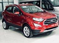 Cần bán xe Ford EcoSport năm sản xuất 2019, ưu đãi hấp dẫn giá 490 triệu tại Tp.HCM